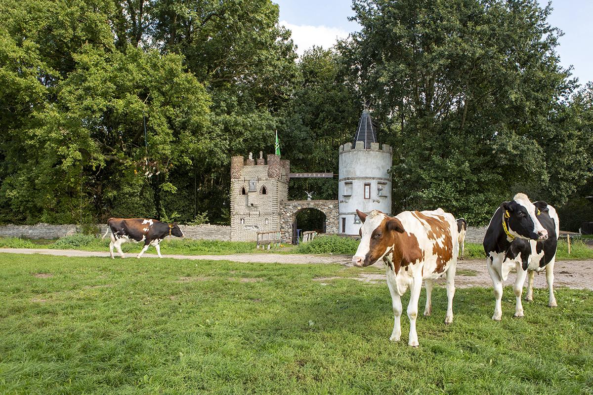 Foto Voor de Gek Follies in Nederland Folly Kasteeltorens, boerderij 't Westendorp Aalten,